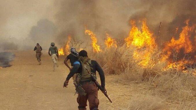 Flesh Attack 25 Killed As Soldiers, Boko Haram Clash In Borno