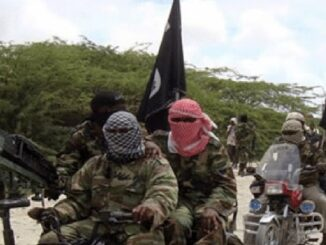 Boko Haram Takeover Niger Village