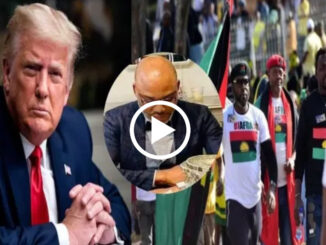 What Donald Trump is set to publish about Biafra