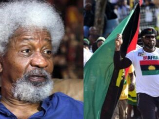 Biafrans we in this together - Soyinka